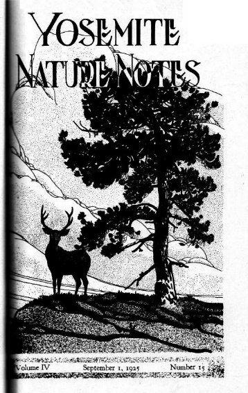 """The Wawona Tree Tunnel."" Yosemite Nature Notes 4, no. 15"