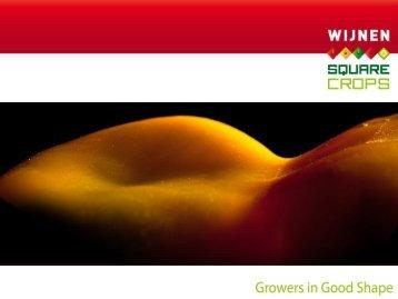 Wijnen Paprika's - Regio zonder grenzen