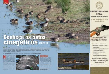 Rodrigues, D. 2012. Conheça os patos cinegéticos (parte II). - ESAC
