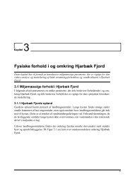 3. Fysiske forhold i og omkring Hjarbæk Fjord