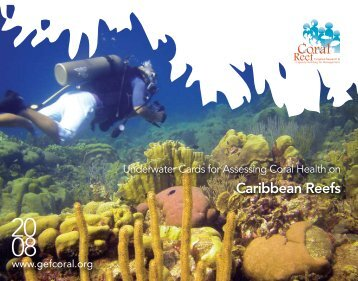 Caribbean Reefs - Coral Reef Targeted Research