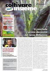 Numero 6 - Natale - Cooperativa Agricola di Legnaia