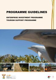 PROGRAMME GUIDELINES - Department of Trade and Industry