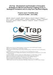 CO2Trap - Development and Evaluation of Innovative Strategies for ...