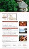 PDF [2.7 MB] - Travel Kolumbien - Seite 7
