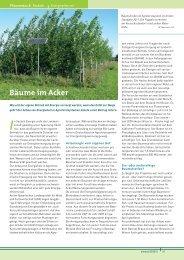 Bäume im Acker - Bayerische Landesanstalt für Landwirtschaft ...