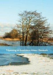 Tilpasning til fremtidens klima i Danmark (Pdf) - Klimatilpasning