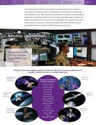 Intelsat Satellite Services: Professional Services