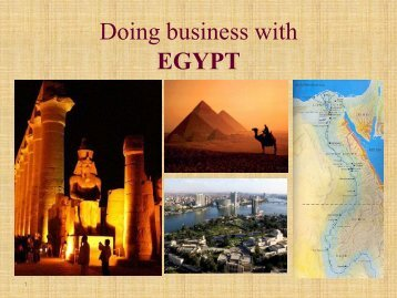Business environment in Egypt - LIAA