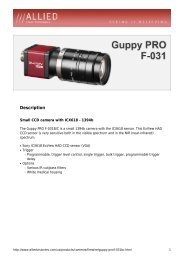 Guppy Pro F-031 B/C Datasheet - 1stVision