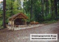 Rechenschaftsbericht 2012 - Brugg
