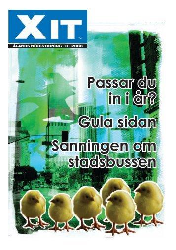 XIT # 3 2008 (pdf)