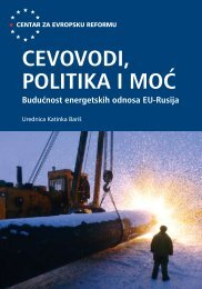 CEVOVODI, POLITIKA I MOĆ - Evropski pokret u Srbiji