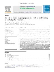 Aspects of silane coupling agents and surface conditioning in ...