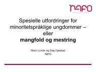 Presentasjon ved Dag Fjæstad og Marit Lunde fra ... - Lesesenteret