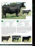AMF - MCS Auction, LLC - Page 7