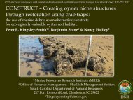 Creating oyster niche structures through restoration using crab traps