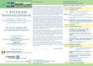 Download [Rostocker Bioenergieforum - Programm / Flyer/ 271 kB]