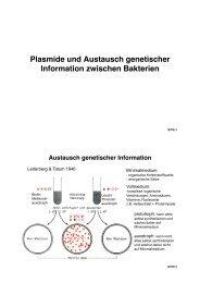 10 Plasmide.pptx - ZMBH