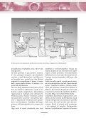 anno 2005 - Palazzo Roccabruna - Page 6