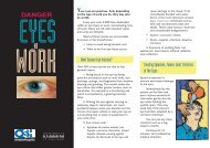 Danger: Eyes at work [252 KB PDF] - Business.govt.nz