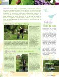 Label Ville - Tourcoing - Page 5