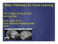 Brain Pathways for Vocal Learning