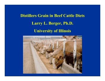 Distillers Grain in Beef Cattle Diets Larry L. Berger, Ph.D. University ...