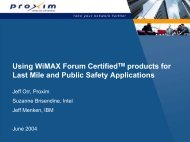 WiMAX Opportunities for Last Mile Access and Public Safety