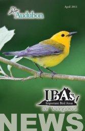 Spring 2011 - National Audubon Society
