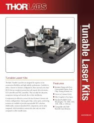 Information Sheet - Thorlabs