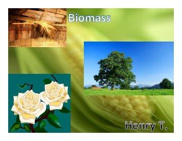 HT Biomass Presentation