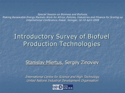 Decision support tool concept for assessment of biofuel ... - unido