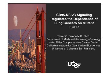 NF-kB in FAS signaling pathway in tumors with EGFR mutations