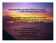 Sea-level Rise and Storm Effects on Coasts ……Under Changing ...