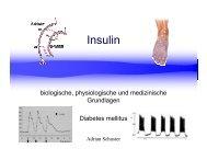 Insulin - biologische, physiologische und medizinische Grundlagen