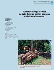 Plantations ingénieuses de bois d'œuvre par les paysans de l'Ouest ...