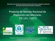 Presentación proyecto Manejo Racional de Productos con Mercurio