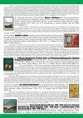 ziar info 26 ani noiembrie 2013.pmd - Demokratisches Forum der ... - Seite 7