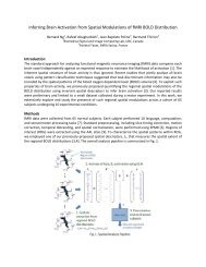 fMRI Activation Spatial Modulation - Biomedical Signal and Image ...