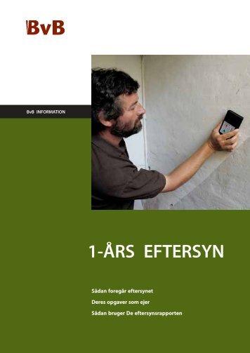 1-ÅRS EFTERSYN - BvB