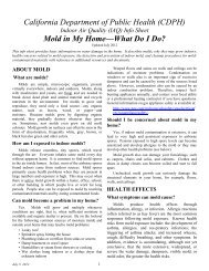 Mold in My Home—What Do I Do? - California Department of Public ...