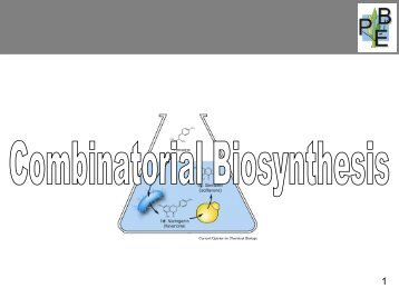 Combinatorial Biosynthesis