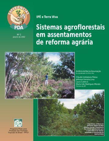 Sistemas agroflorestais em assentamentos de reforma agrária
