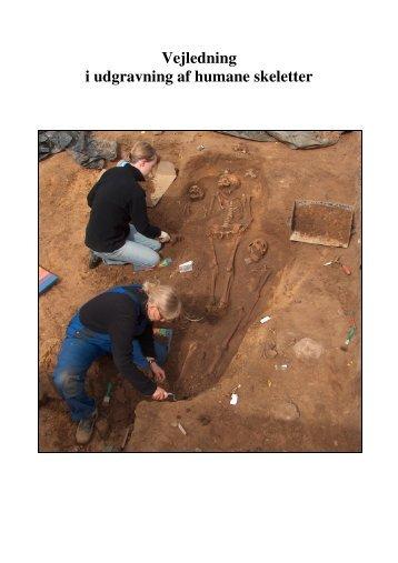 Vejledning i udgravning af humane skeletter - Horsens Museum