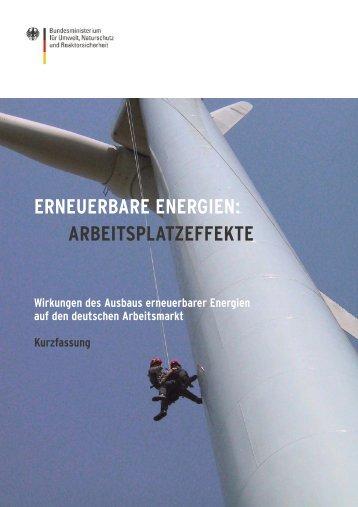 Wirkungen des Ausbaus erneuerbarer Energien auf den deutschen ...