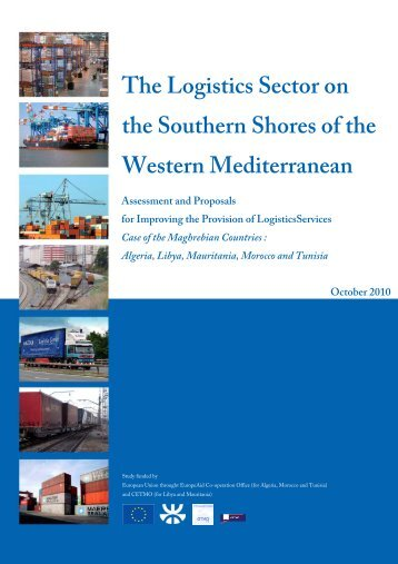 The Logistics Sector on the Southern Shores of the Western ... - cetmo