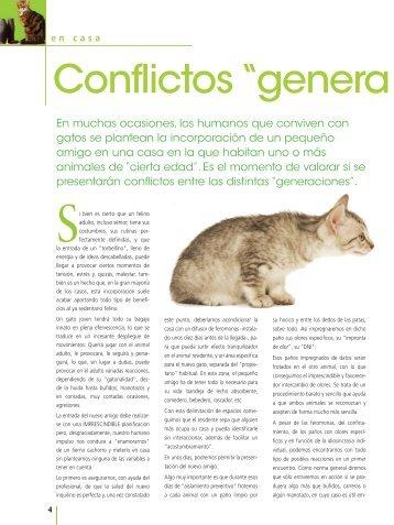"""Conflictos """"genera cionales"""" - Royal Canin"""