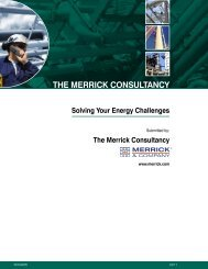 THE MERRICK CONSULTANCY - Merrick & Company