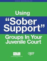 NCJFCJ Using Sober Support Groups In Your Juvenile Court